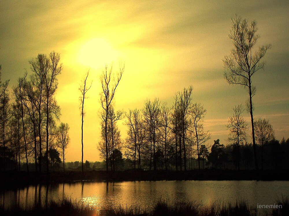 Yellow Sunset  Lake by ienemien