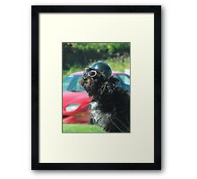DUDE! Framed Print