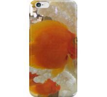 Colorful Fish, Macy's Herald Square, New York City iPhone Case/Skin