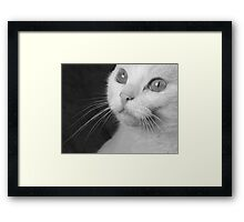 What Big Eyes You Have.... (Mono) Framed Print