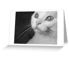 What Big Eyes You Have.... (Mono) Greeting Card