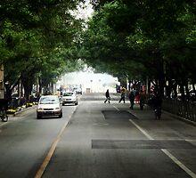 Street by AmandaBerg