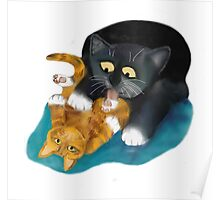 Bath Time for Tiger Kitten Poster