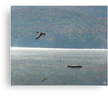 Goose Over Stinson Lake Canvas Print