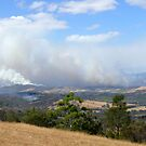 Fires in the Yarra Valley by Ern Mainka