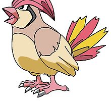 Pidgeotto by BelovedxCisque