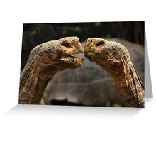 Tortoise Magic Greeting Card