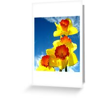 Daffodils In The Sky Greeting Card