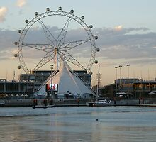 Fairy Wheel - Melbourne Docksland by Margherita Coppolino