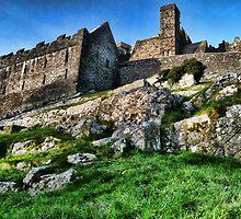 Cashel of the Kings by Brett Williams