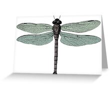 antique typographic vintage dragonfly Greeting Card