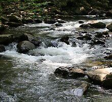 Glade Creek II by Lisawv