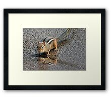 HELLO HANDSOME! Framed Print