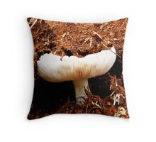 Working hard to reach the light. Throw Pillow