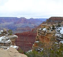 Grand Canyon 9 by Leona Bessey