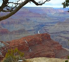 Grand Canyon 11 by Leona Bessey