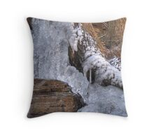 Icy Toes Throw Pillow