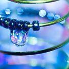 Water and Spring II by Sherstin Schwartz