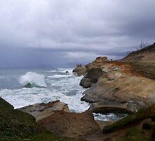 Raging Waves by Kelly Carmody