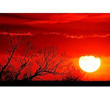 Summer Heat Photographic Print