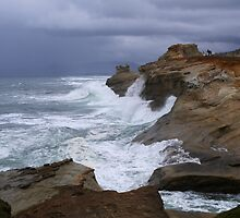 Waves of Thunder by Kelly Carmody