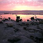 Lake Illawarra Rocky Shore by ozthunder