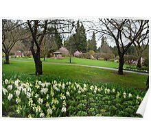 Spring  Butchart Garden in Victoria, BC, Canada Poster