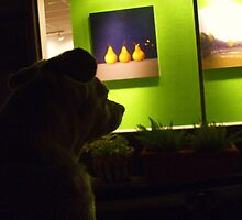DOG - GONE ,,,ART CRITIC by artist4peace