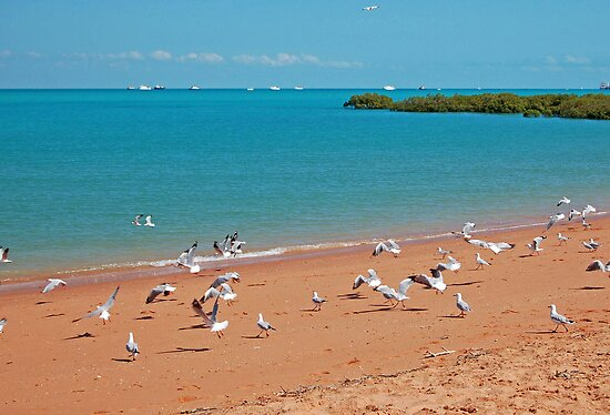 Town Beach and Roebuck Bay, Broome, Western Australia by Adrian Paul