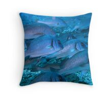 Schooling fish Throw Pillow