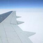 Aeroplane Wing by Donna Chapman