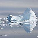 Iceberg reflections by David Burren