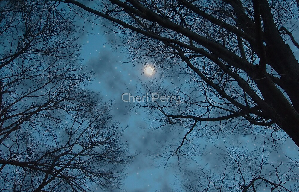 Bright at Night by Cheri Perry