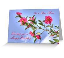 Camellia Sasanqua Greeting Card