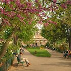 Paris Park in Spring by Michael Matthews