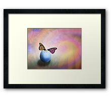 About Life, Birth and Rebirth Framed Print