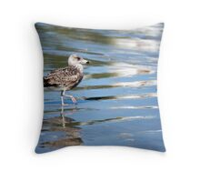 Afternoon stroll...  Throw Pillow