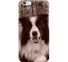 shamus frisbee dog iPhone Case/Skin