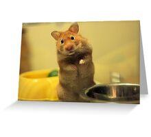 Feed Minnie Greeting Card