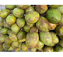 Cross section of a number of tender fresh coconuts Photographic Print
