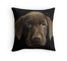 """Fergus"" Throw Pillow"