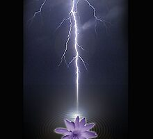 lotus energy by arteology