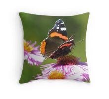 Colorful wings Throw Pillow