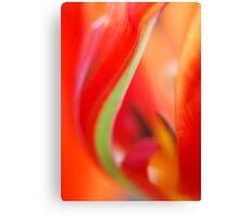 Tulip Detail Canvas Print
