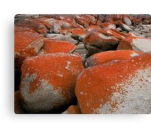 Colours and Shapes, Binalong Bay, Tasmania, Australia. Canvas Print