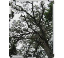 Big tree iPad Case/Skin