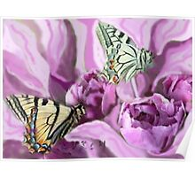 Butterflies and Roses Poster