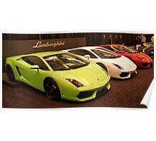Viva Lamborghini Poster