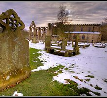 Bolton Abbey another view by Shaun Whiteman