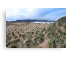wild dunes at the maharees Canvas Print
